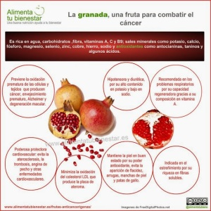 granada fruta